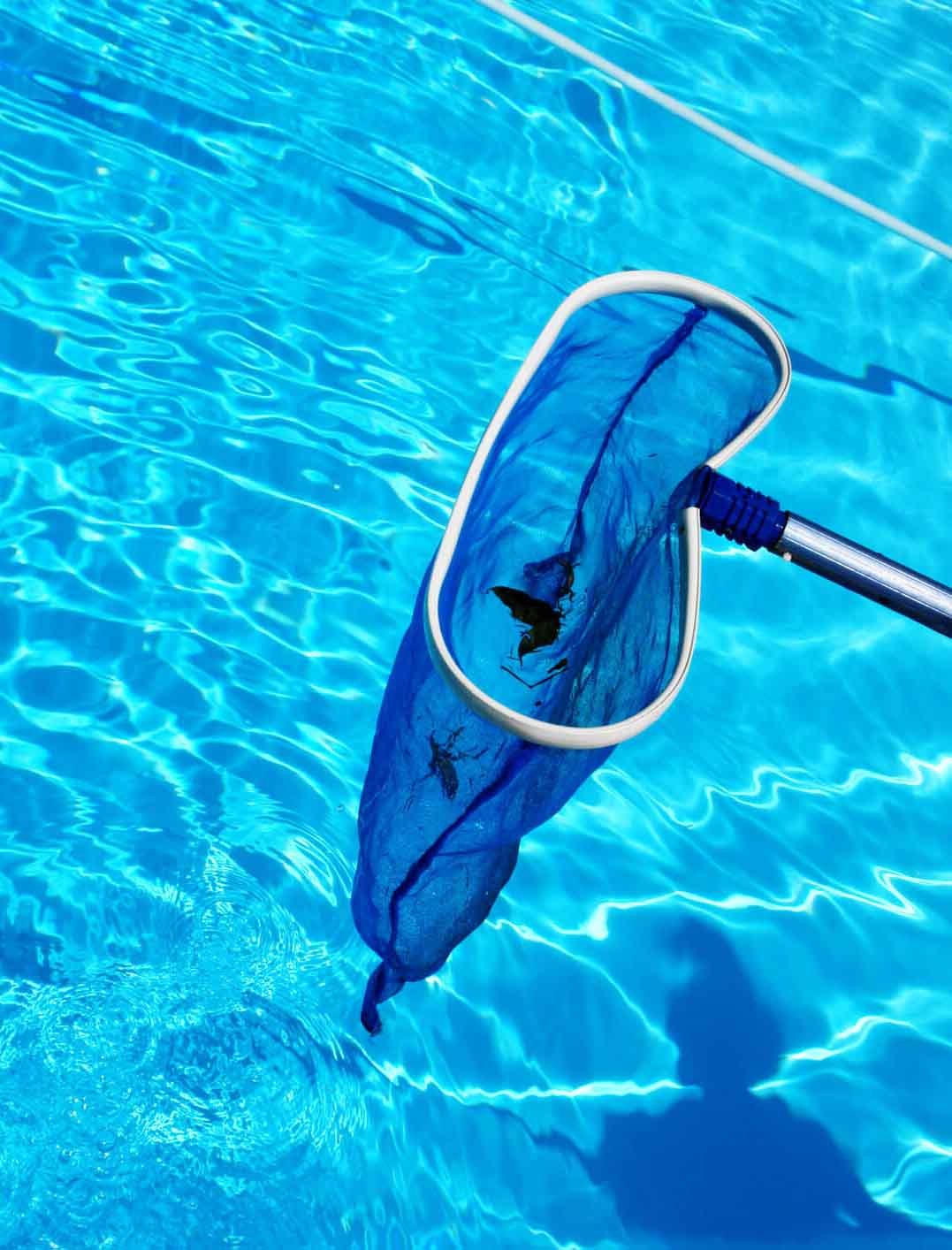 Swimming Pool Products Wholesale Suppliers,Dealers in Qatar